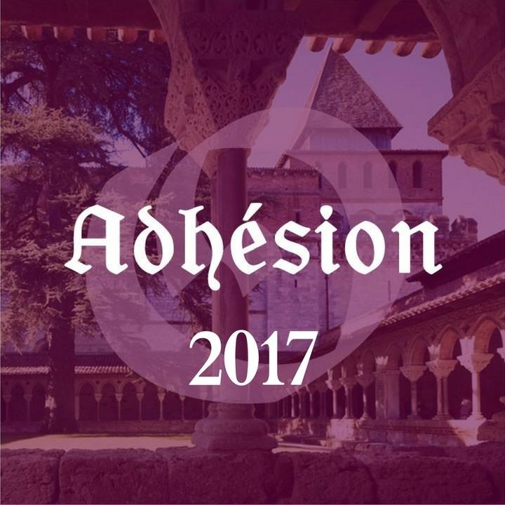 adhesion-organum-2017